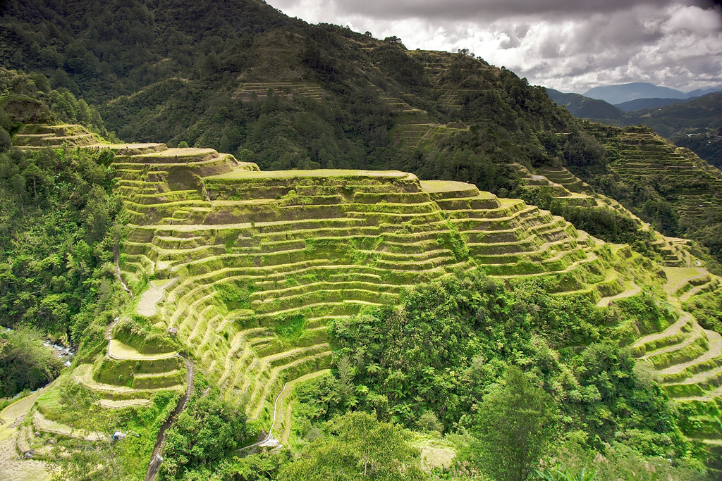 Banaue Rice Terraces photo